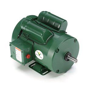 leeson electric motors